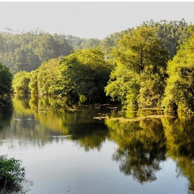 Descenso Rio Umia