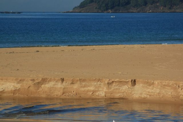 Praia America. Web